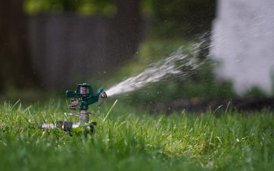 What is a Sprinkler Blowout?