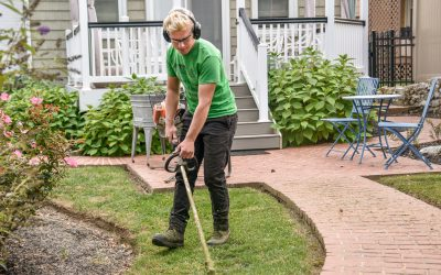 Landscaping Tips from the Pros