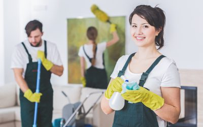 Why a Pro Cleaner is Important for your Home